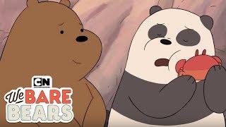 We Bare Bears | Friendship Moments - Part 3 (Hindi) | Cartoon Network