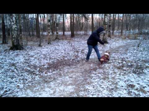 Клип Люк - Зима