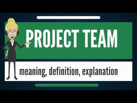 What is PROJECT TEAM? What does PROJECT TEAM mean? PROJECT TEAM meaning & explanation