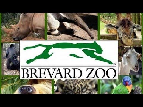 Brevard Zoo — Melbourne, FL /  RECORRIDO POR EL ZOOLÓGICO