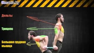 видео отжимания на брусьях какие мышцы