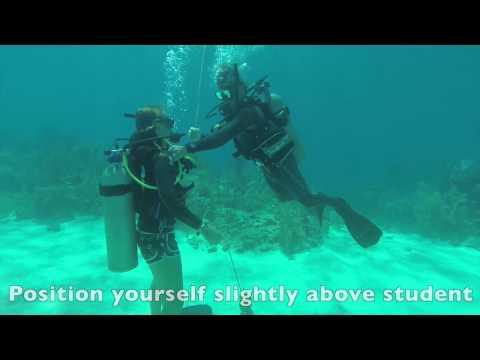 PADI CESA Exercise - Open Water
