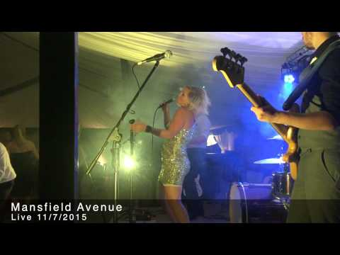 Mansfield Avenue Band LIVE