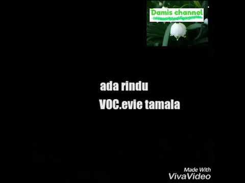Lirik lagu ada rindu Evie Tamala versi original