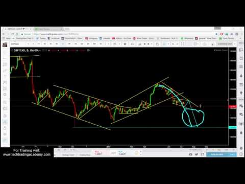 Forex Webinar Weekly Market Outlook from 9 to 14 July 2017