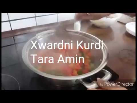 Xwardni Kurdi Tara Amin lenani shlai bame