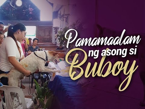 24 Oras: Katapatan ng asong si Buboy sa kaibigang gurong pumanaw na