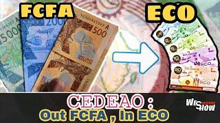 ECO - FCFA : les raisons profondes des liens entre la France et l'Afrique Francophone
