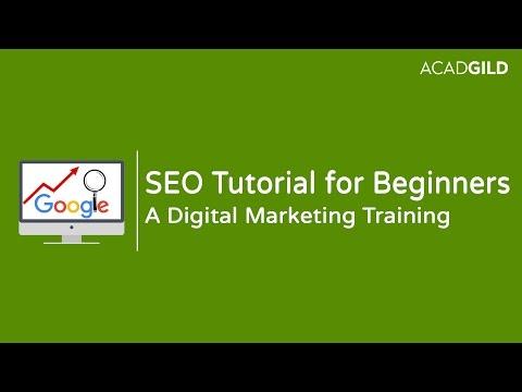 SEO Tutorial for Beginners | Introduction to SEO | Digital Marketing Tutorial thumbnail
