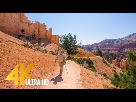 Amazing Bryce Canyon Virtual Hike 4K Footage for Fitness Equipment/Training Simulators 1.5 HRS