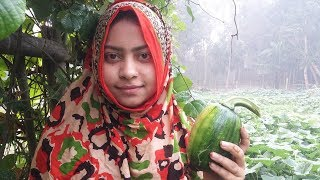 Green Pumpkin Curry Cooking Recipe - Village Food Recipe Farm fresh Pumpkin Recipe