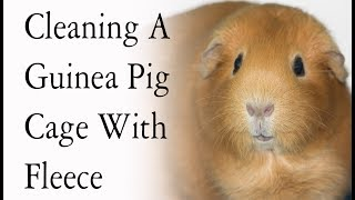 Cleaning A DIY Guinea Pig Cage *With Fleece Bedding*