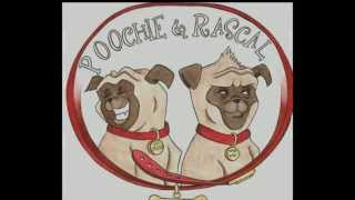 """Poochie & Rascal's """"prospect Gets A Pug""""...the Story Of Two Pug Rescues"""