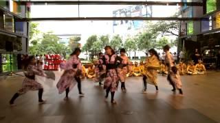 千本桜踊ってみた【LIVE】Senbonzakura Traditional Dance Cover
