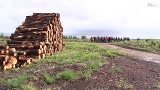 Forexpo : des étudiants normands à la découverte du massif landais