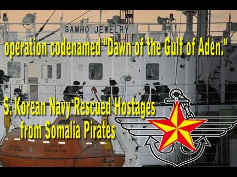 Operation Operation Dawn of Gulf of Aden, S. Korean Navy Rescued Hostages from Somalia