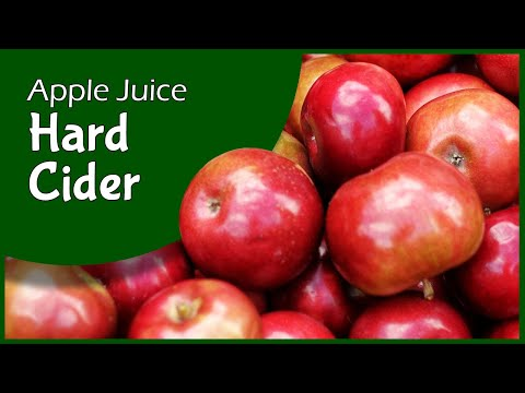 Hard Cider from Store Bought Apple Juice!