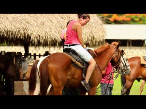 Belize Horseback Riding - Beaches & Dreams Seafront Inn, Hopkins