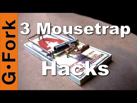 Get Rid Of Mice! | 3 Mouse Trap Hacks | GardenFork