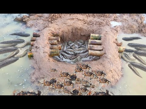 New Idea Top 5 Deep hole and Crab Trap 2017 -  Build  Fish Trap And Crab Trap in Cambodia
