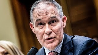 OOPS! Scott Pruitt Accidentally Admits To Committing A Felony While Talking To Congress