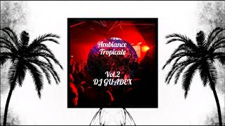 AMBIANCE TROPICALE Vol 2 By Deejay Guadex