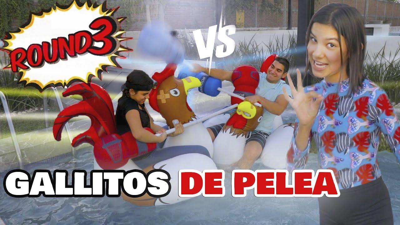 EL RETO DE LOS GALLITOS DE PELEA ft Sebastian y Camila | TV Ana Emilia