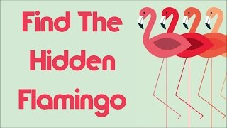 Only 1% Will Find The Hidden Flamingo Immediately