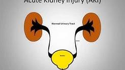 hqdefault - Acute Kidney Failure In Children