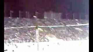 Adana Demir Spor - Trabzon -  Mavi Lacivert Şampiyon şimşklr