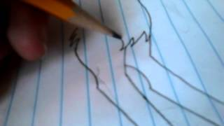 How to draw my anime wolf