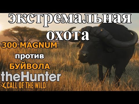 МАГНУМ 300 VS БУЙВОЛ!!! ЭКСТРЕМАЛЬНАЯ ОХОТА theHunter: Call of the Wild