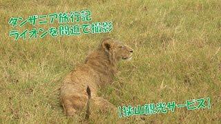 【株式会社 狭山観光サービス】 小さい会社は♡が有ります。 東京都武蔵...