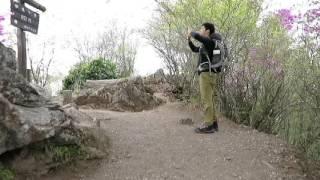 正丸峠から伊豆ケ岳を経て子の権現