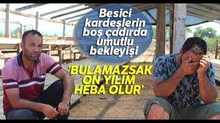 Antalya'da Kiralık Tır Şoförünün 25 Büyükbaş Hayvanla Ortadan Kaybolduğu İddiası