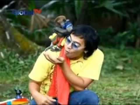 """Komeng Acak Adul """"Isi TTS dan Jagain Monyet"""""""