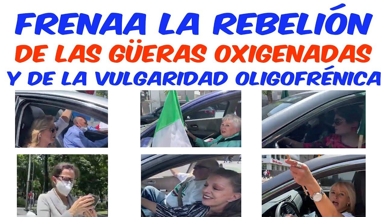 FRENAA la rebelión de las güeras y la vulgaridad oligofrénica