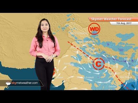 Weather Forecast for Aug 7: Rain in Delhi, Haryana, Uttar Pradesh, Himachal Pradesh