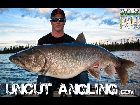 50+ POUND LAKE TROUT!!!!! – Uncut Angling – June 14, 2012