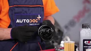 Come sostituire l'olio motore ed il filtro dell'olio MERCEDES-BENZ VIANO W639 [TUTORIAL]