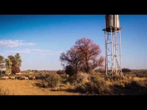 Karoo Hunt in Motion
