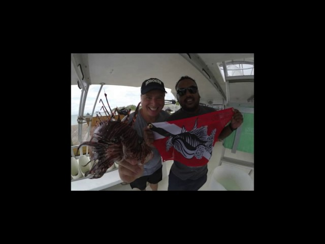 Lionfish Hunting and Removal in Jamaica 2017