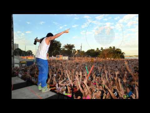 Steve Aoki Ultra Music Festival 2012 HD [Full Set]