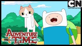 The Box Prince | Adventure Time | Cartoon Network