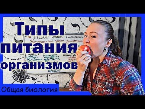 ГОСТ 30389-2013 Услуги общественного питания. Предприятия