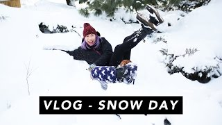 VLOG | SNOW DAY IN CENTRAL PARK 2015