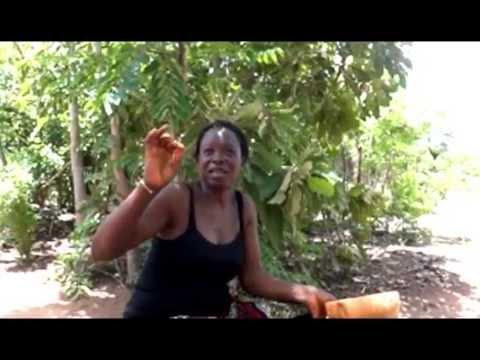 Les terres arides deviennent riche au nord Togo