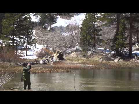 Snownado bishop creek canyon doovi for Bishop creek fishing
