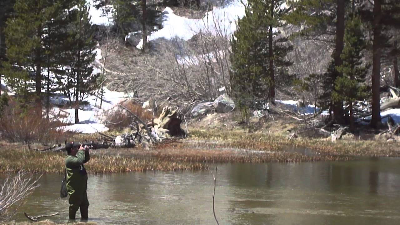 fishing weir pond bishop creek canyon youtube