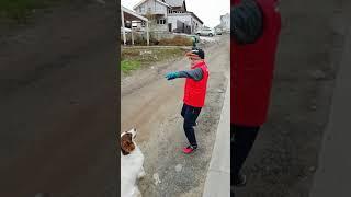 """Vlog прогулки с пёселем Хорусом и """"советы"""", как обмануть собаку"""
